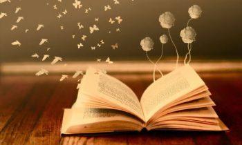 Ülkemizdeki Okuma Oranları Doğru mu?