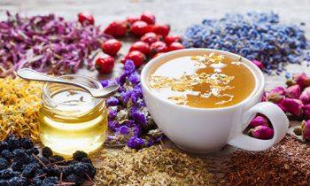 Bitki Çaylarını Nasıl Demle meliyiz?