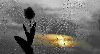 Duygu Tefecileri Layık Değildir Sevilmeye